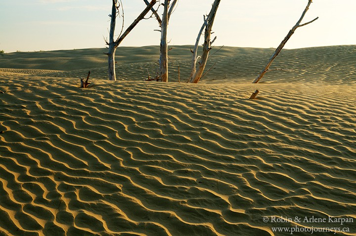 sand ripples, great sand hills saskatchewan