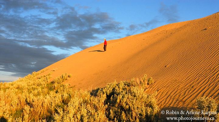 great sand hills saskatchewan