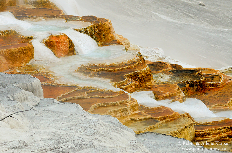 terraces, Yellowstone National Park