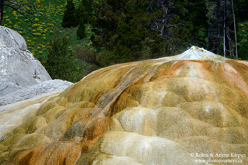 Mammoth terraces, Yellowstone National Park