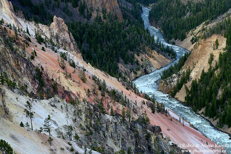Canyon, Yellowstone National Park