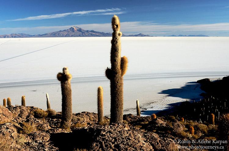 Incahuasi Island, Bolivia