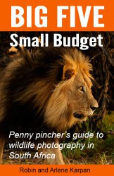 Big Five Small Budget cover