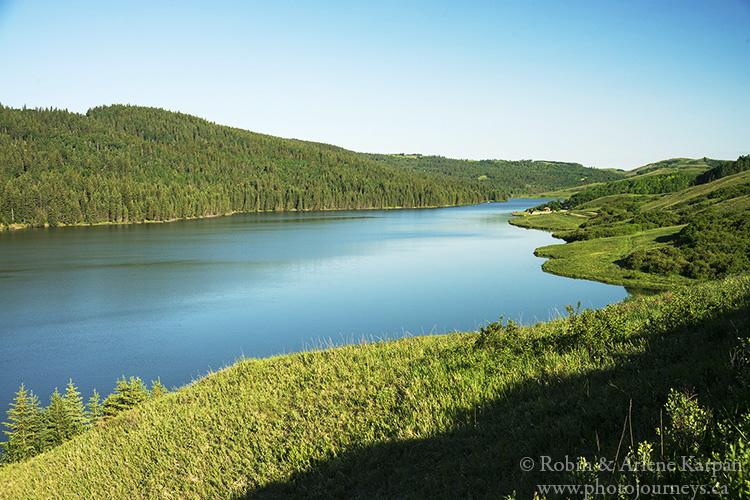 Reesor Lake, Cypress Hills, Alberta