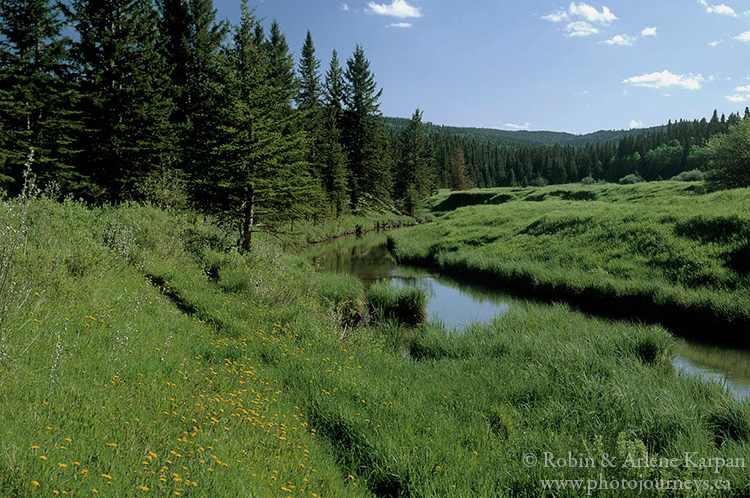 Battle Creek, West Block, Cypress Hills Interprovincial Park, Saskatchewan