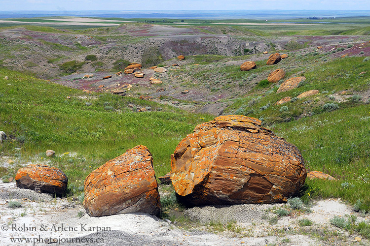 Red Rock Coulee Natural Area, Alberta
