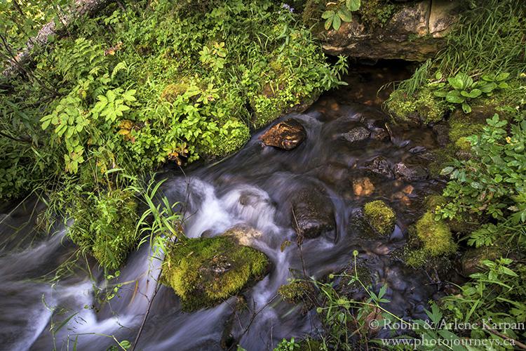 Karst spring source, Grass River Provincial Park, Manitoba