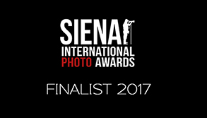 Siena Finalist Logo