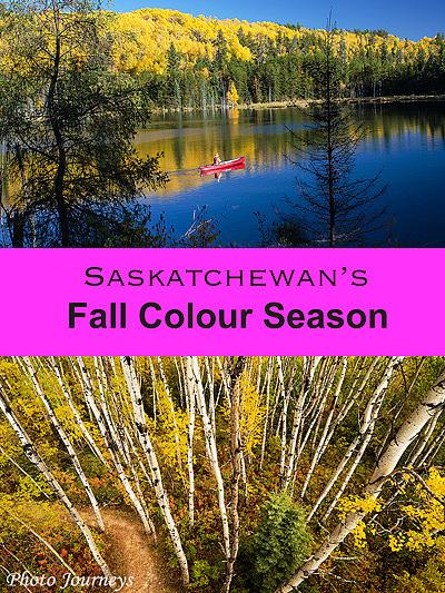 Blog post on Photojourneys - Saskatchewan's Fall Colour Season