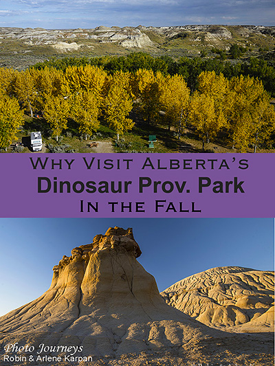 PIN - Dinosaur Provincial Park