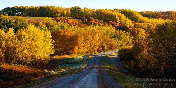 Thickwood Hills near Blaine Lake