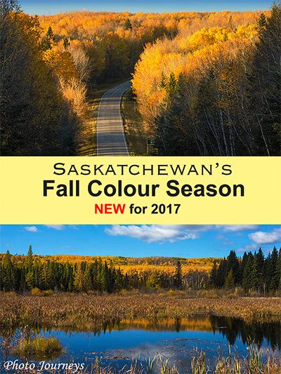 fall colours blog pin