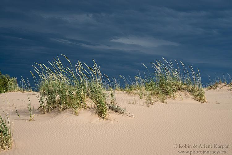 Athabasca Sand Dunes, northern Saskatchewan, Canada