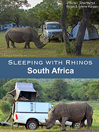 Sleeping with Rhinos blog posting