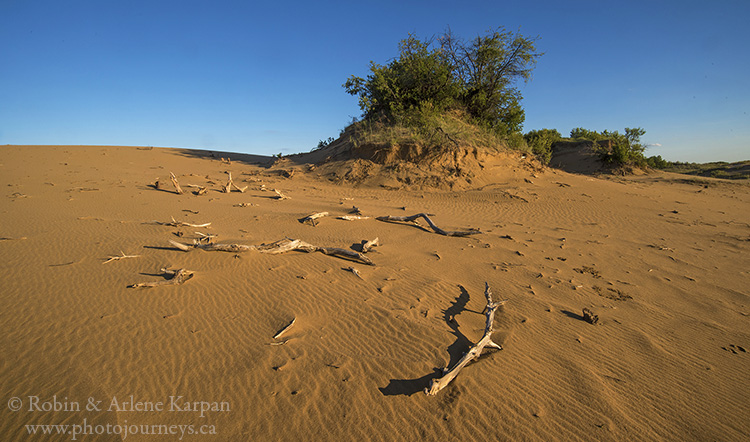 Dunes, Douglas Provincial Park, Saskatchewan